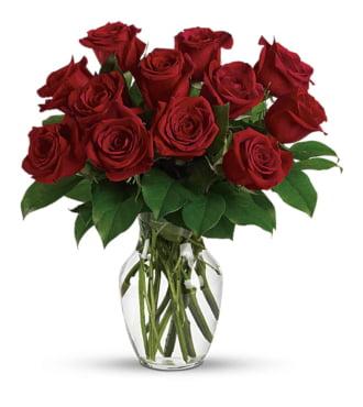 A Dozen Get Well Roses