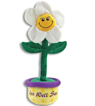 17 inch Get Well Daisy Sings You Are My Sunshine